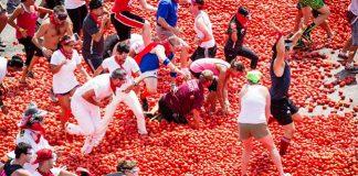 Nét độc đáo lễ hội ném cà chua La Tomatina