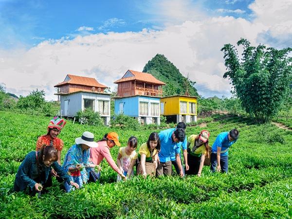 Mộc Châu Arena Village homestay ở mộc châu