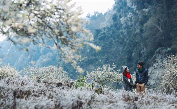 Bản Tân Lập điểm du lịch Mộc Châu