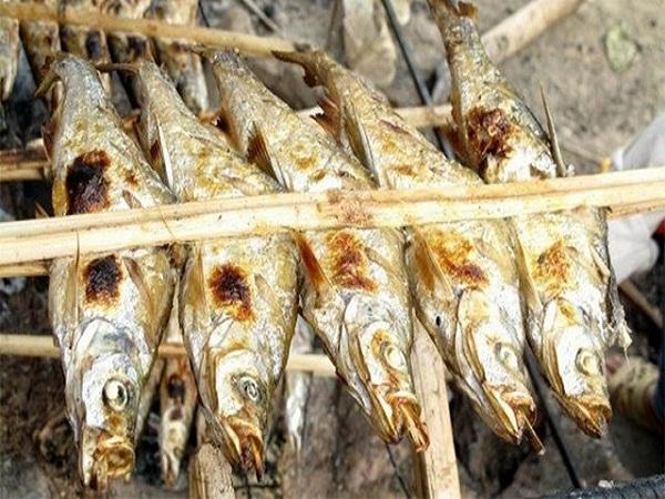 Cá nướng sông Đà - đặc sản hòa bình