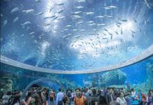 Tìm hiểu viện hải dương học Nha Trang nối tiếng