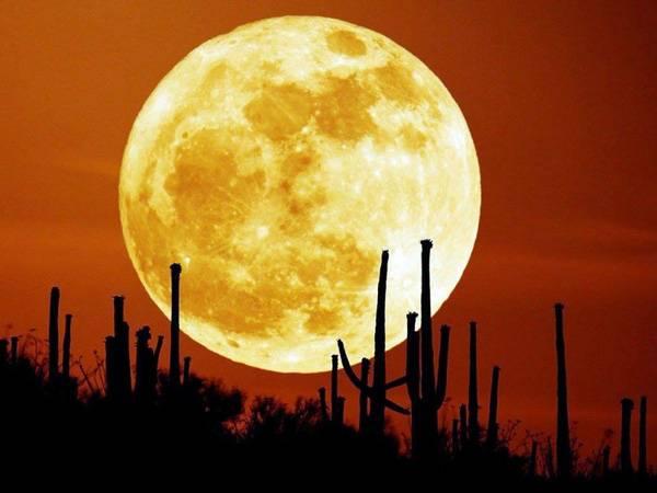 Giải mã giấc mơ thấy mặt trăng có ý nghĩa gì?