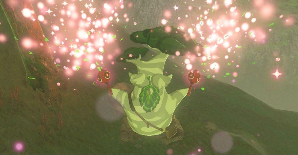 Zelda: Phần thưởng hạt giống Korok cuối cùng của BOTW